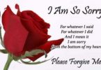 iam-sorry-messages-for-friends