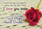 Good-Night-Messages-for-Husband